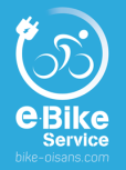 Bike award 2 electic